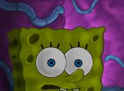 SpongeBob is lost
