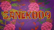 Sanek009 title card by Egor