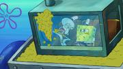 Sanitation Insanity 186