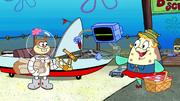 A Cabin in the Kelp 005