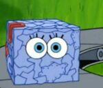 SpongeCube
