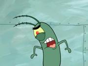 Planktonsregular1