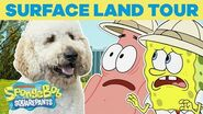 Surface Land Tour 🏝️ SPONGEBOB'S BIG BIRTHDAY BLOW OUT 🎉 SpongeBob