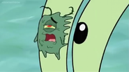 Plankton Squished