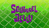 Squirrel Jelly