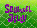 Squirrel Jelly/gallery