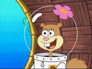 The Krabby Patty That Ate Bikini Bottom 162
