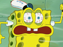 SpongeHenge 088