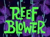 Reef Blower