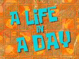 Жизнь на день