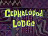 Cephalopod Lodge title card