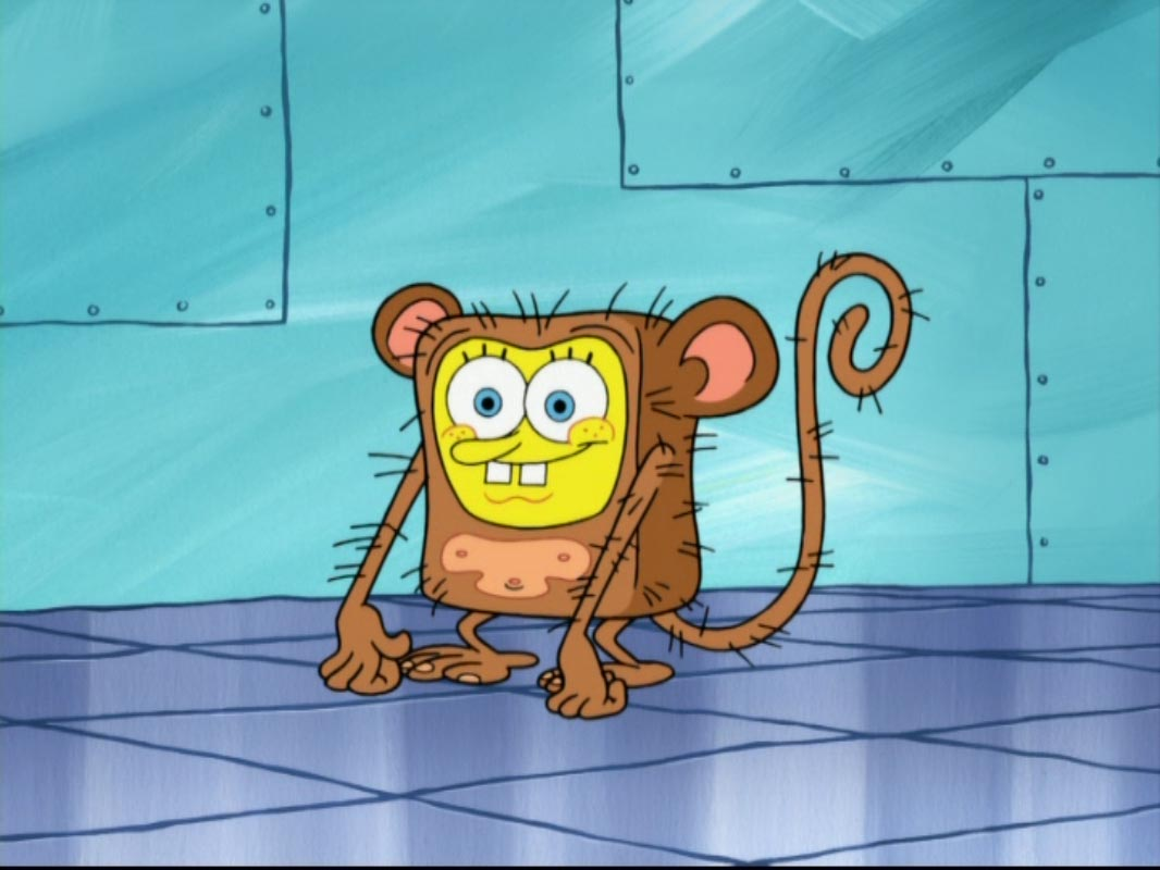 Sandy and spongebob hook up