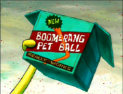 Boomerang Pet Ball