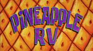 Pineapple RV Title Card-0