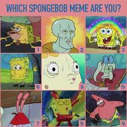 Which meme are you