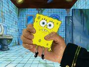 Model Sponge 160