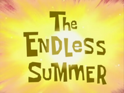 The Endless Summer 002