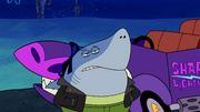 Sharks vs. Pods 043