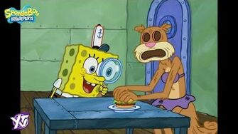SpongeBob Squarepants Someone's in the Kitchen with Sandy Clip YTV