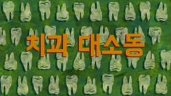 The Whole Tooth (Korean)