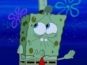 Moldy Sponge 012