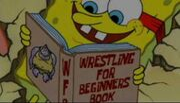 WrestleBook