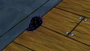The Incredible Shrinking Sponge 030