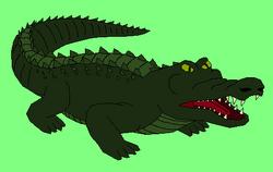 Crocodile (Omicron)