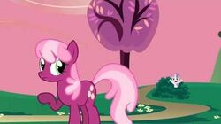 Sweetie Belle - Oh come on!
