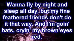 Stellaluna - My Whole World's Turned Upside Down (lyrics)