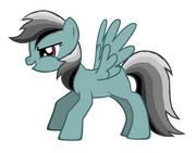 Gray Dash