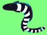 Electric Eel (Omicron)