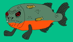 Don Mike Cubafish