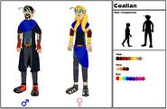 Ceallan Species