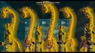 Madagascar Candyman Daydream Explosion