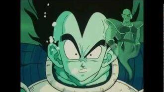 TFS - Vegeta's Rage