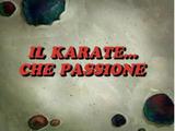 Il Karate... che passione!