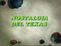 Nostalgia del Texas