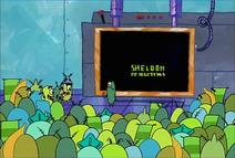 SHELDON OPEN MATEE