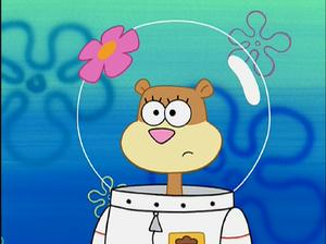 Sandy Spongepocalypse