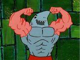 Anchor Arms Shark