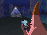 Patrick wearing a cone