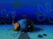 Plankton! Gallery (38)
