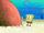 SpongeBob SquarePants (character)/gallery/I'm with Stupid
