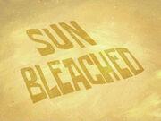 106b - Sun Bleached