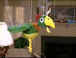 Potty the Parrot