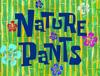 Nature Pant