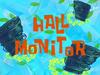 Hair Monitor