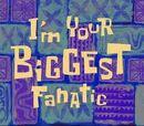 Ik ben je grootste fanaticus
