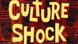 Cultuurschok